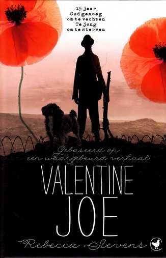 Coverafbeelding van: Valentine Joe
