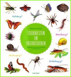 Coverafbeelding van: Steekbeesten en kriebeldieren