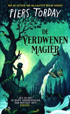 Coverafbeelding van: De verdwenen magiër