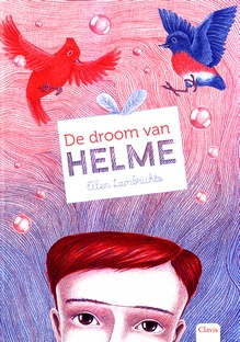 Coverafbeelding van: De droom van Helme
